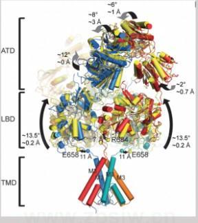 三种典型金属结构的晶体学特点